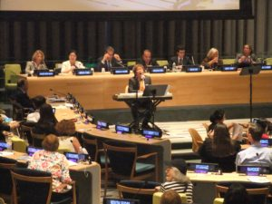 2013.国連